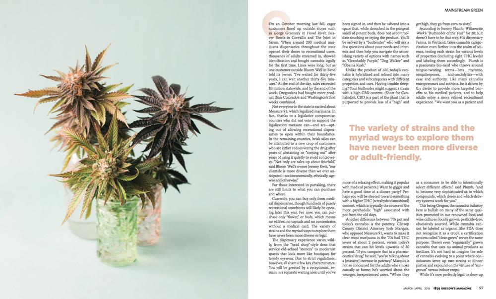 cameron-zegers-editorial-photographer-oregon-weed-2.jpg