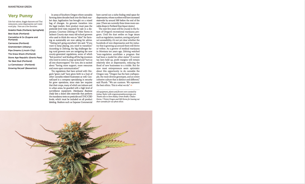 cameron-zegers-editorial-photographer-oregon-weed-4.jpg