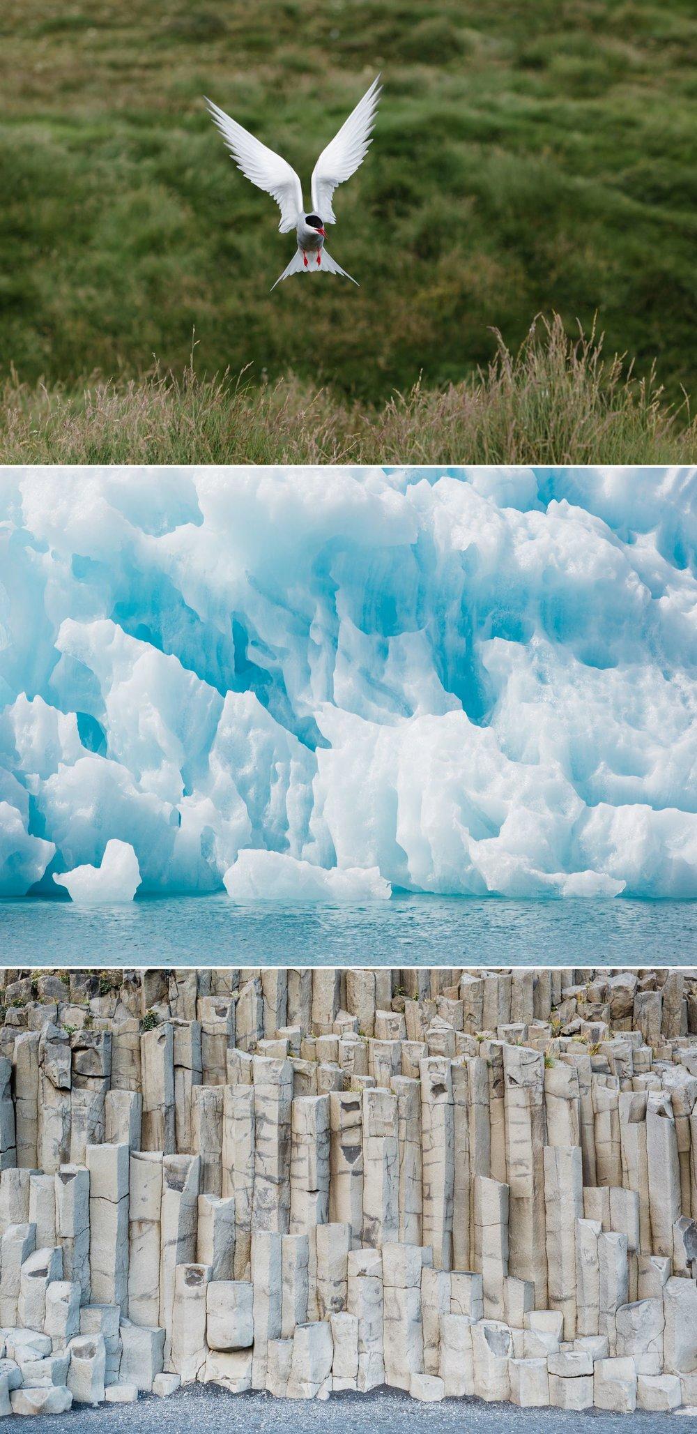 19-photographer-iceland-travel.jpg