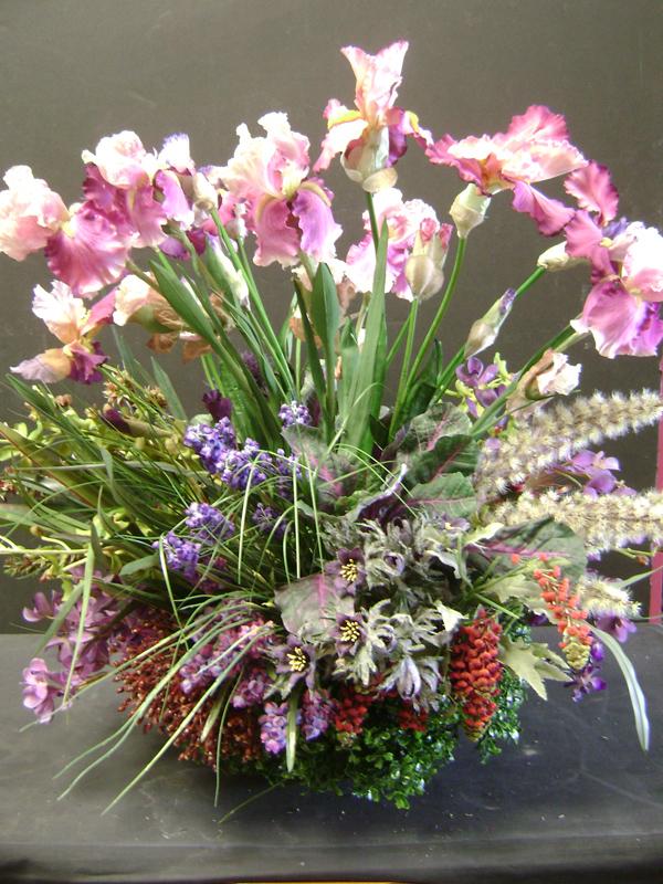 Bearded iris garden floral