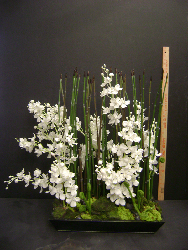 White orchids and horsetail