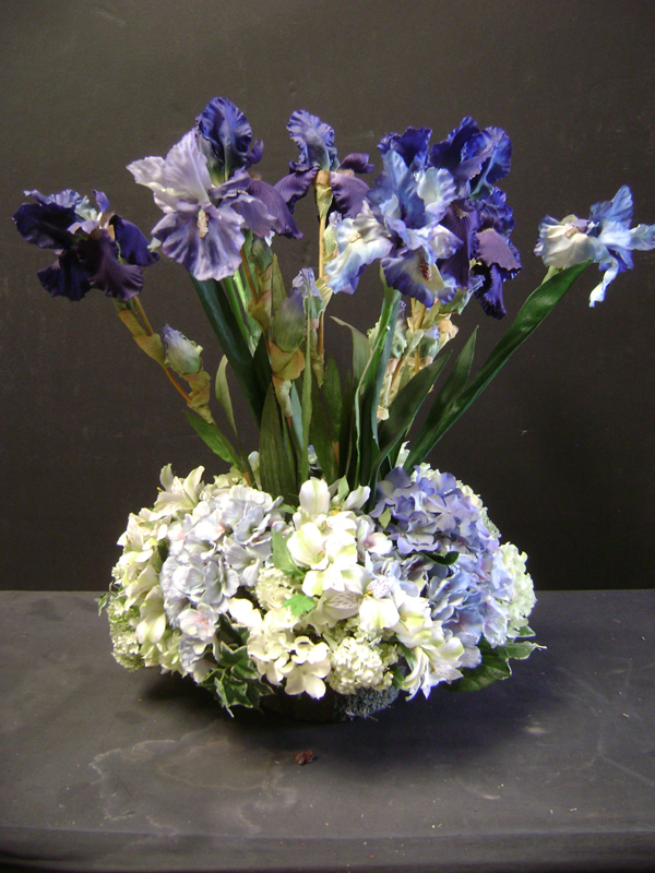 Blue bearded iris floral