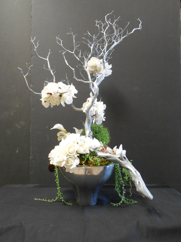 Silver manzanita with white floral
