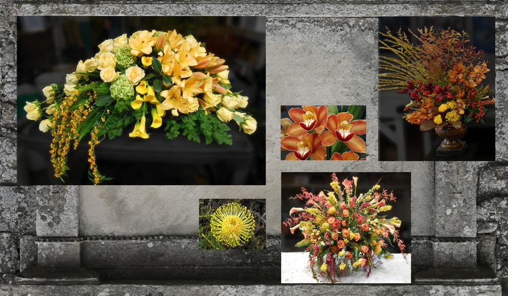 funeral_amber.jpg
