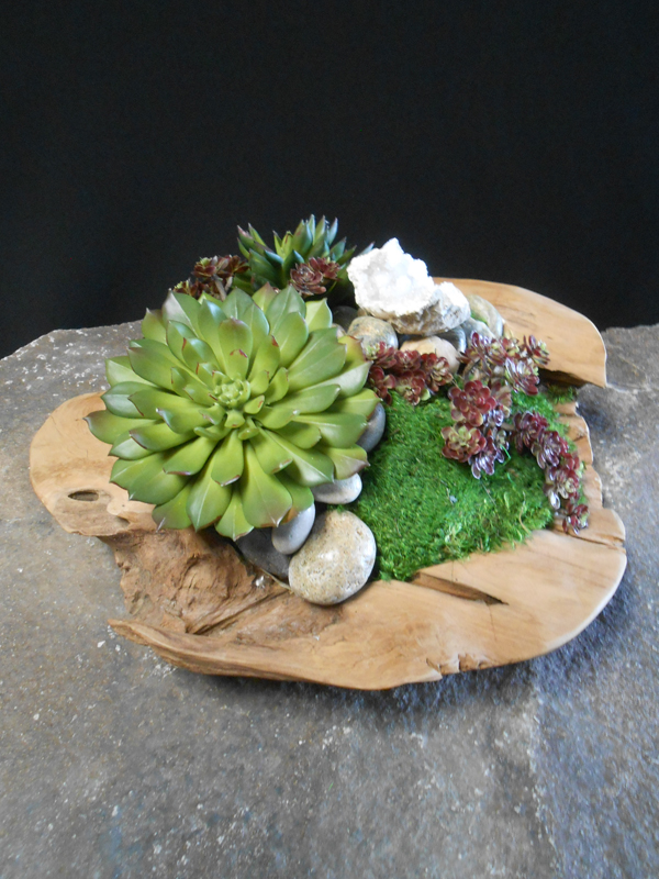 Wood and Crystal Succulent Bowl