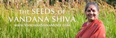 Shiva_Seeds of Democracy