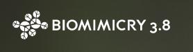 Biomimicry3.8