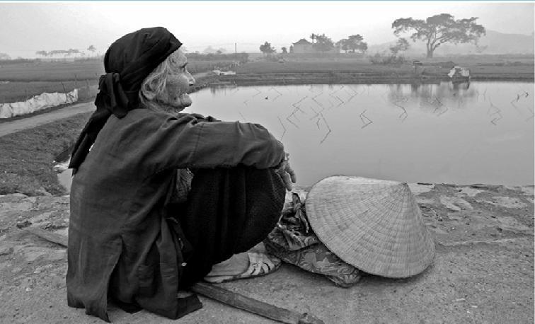 Người mẹViệt Nam, nguồn internet