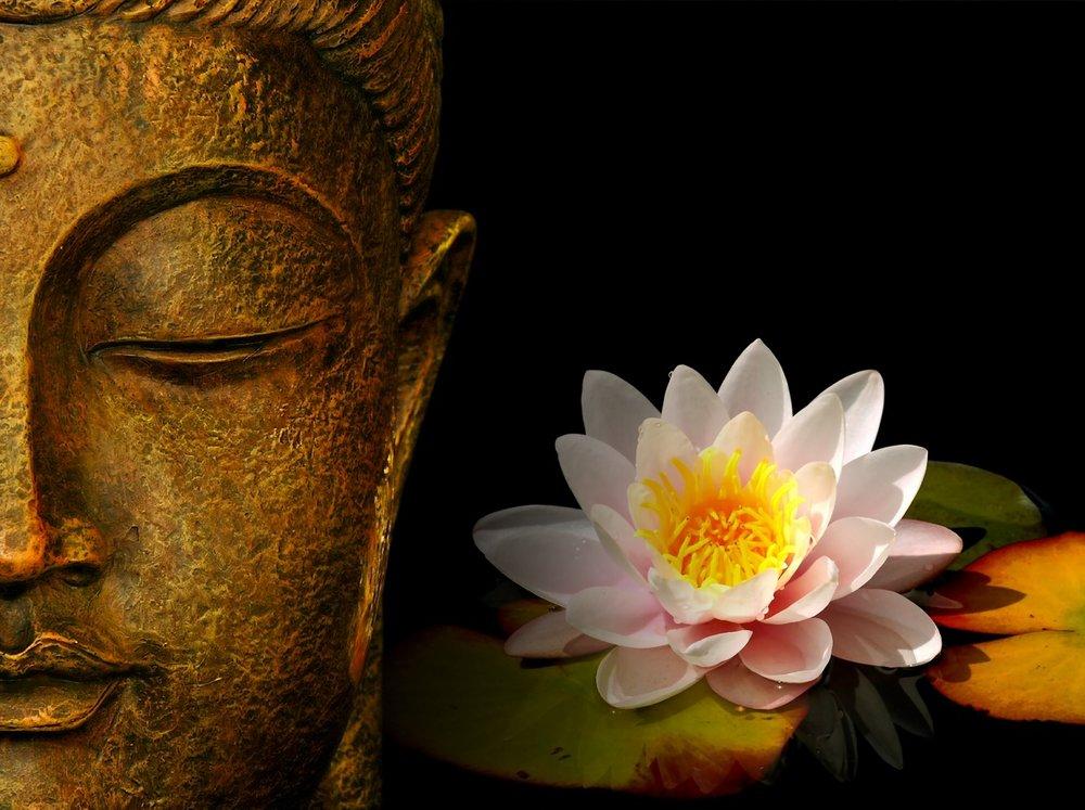 Đức Phật và Hoa Sen.Nguồn Internet.