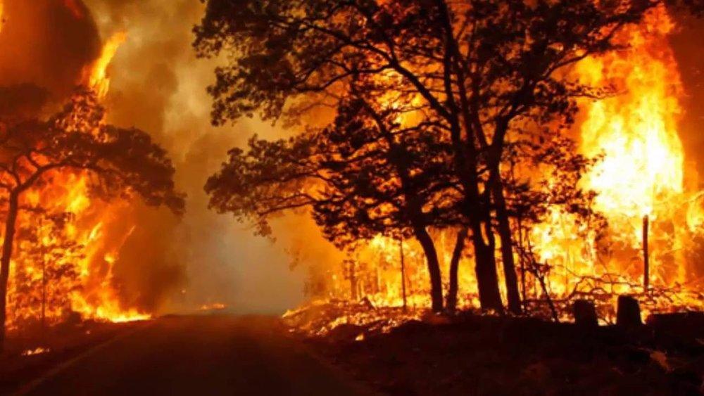 Cháy rừng tại California, Hoa Kỳ.Nguồn internet.