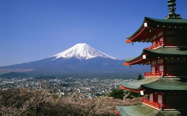 Xứ Hoa Anh Đào - Nhật Bản. Nguồn internet.