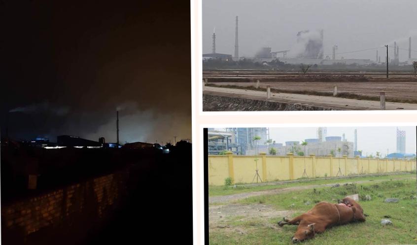 Ô nhiễm tại nhà máy đạm Ninh Bình. Nguồn FB Võ Hồng Ly.