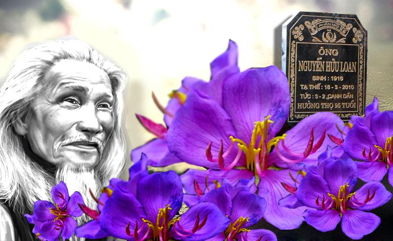 Nhà thơ Hữu Loan - tình yêu với mầu sim tím. Nguồn internet.