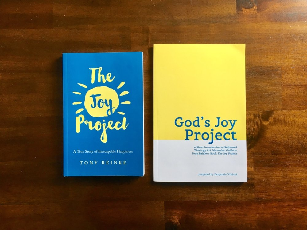 The Joy Project & God's Joy Project.jpg