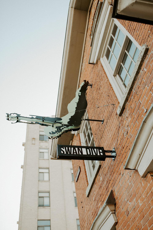 _Alyssa_Flood_Photography_BIM_Swan_Dive-8268.jpg