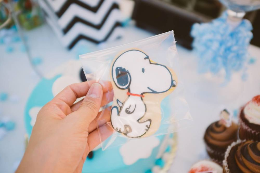 Snoopy Theme Baby Shower