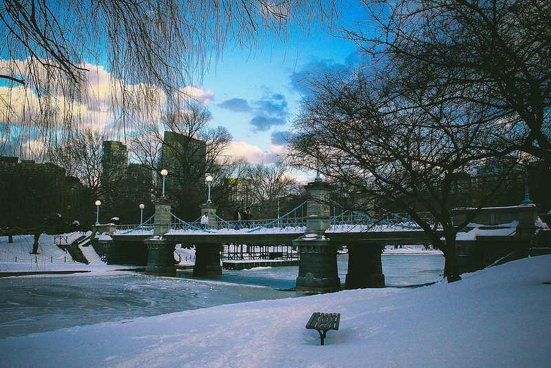 The Public Garden, also known as Boston Public Garden