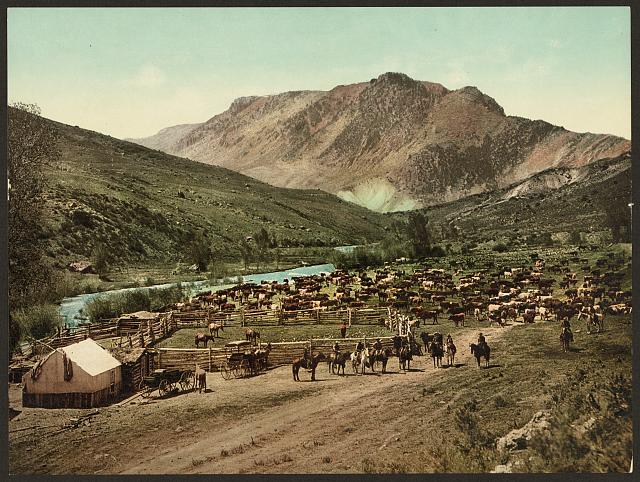 Colorado Roundup on the Cimarron | Circa 1898