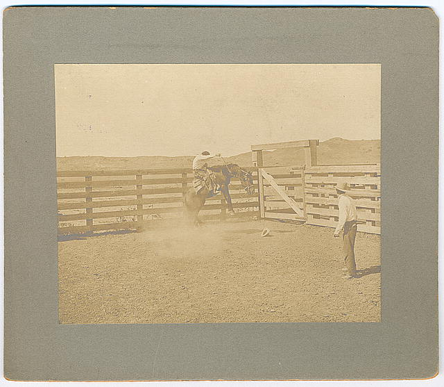 Cowboy on a Bucking Bronco in a Corral at the LS Ranch in Texas | Circa 1907
