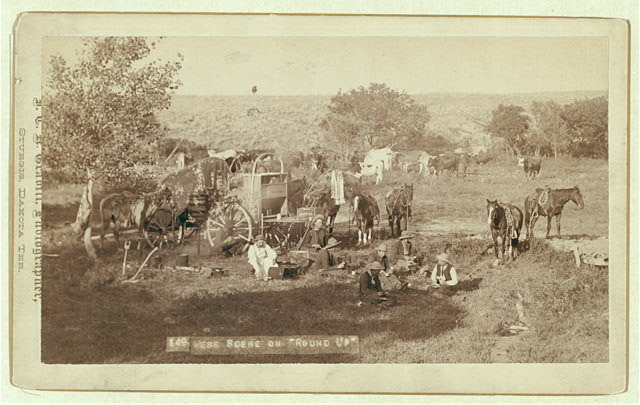 Cowboys Eating Near a Chuck Wagon with Small Groups of Horses and Cattle in Campsite | Circa 1887