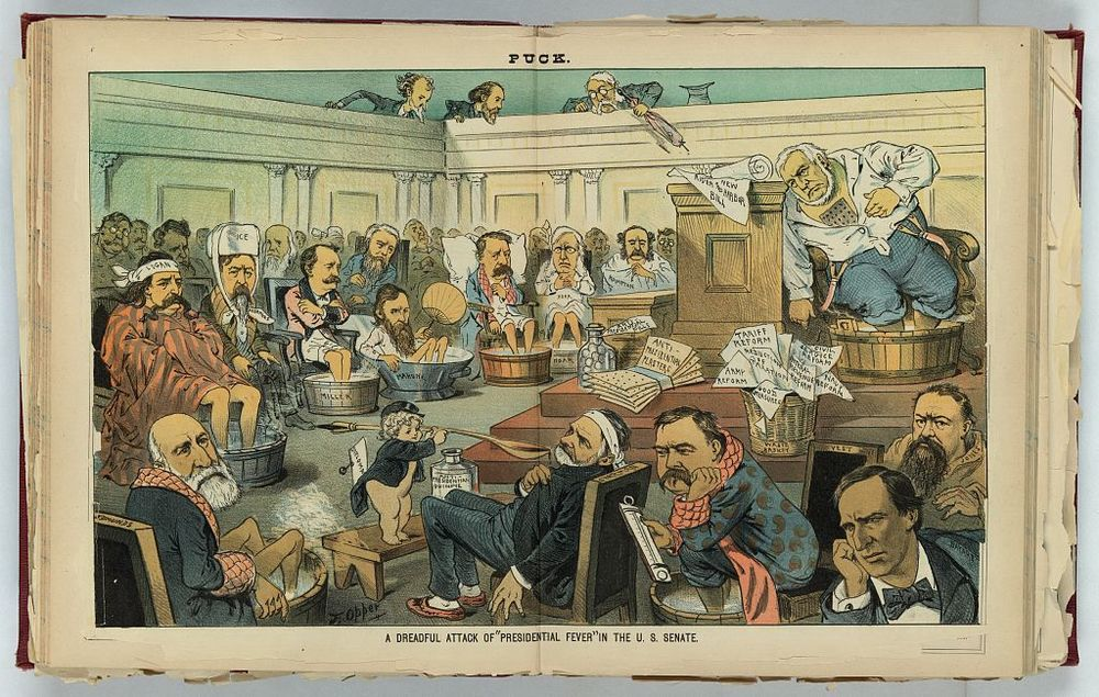 Dreadful Attack of Presidential Fever in the US Senate | Circa 1883