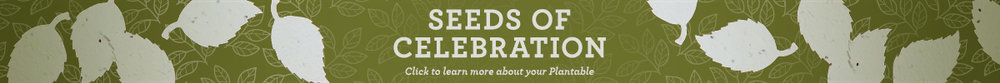 SeedsOfCelebration_banner.jpg