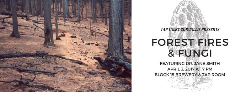 TapTalks-ForestFiresFungi.jpg
