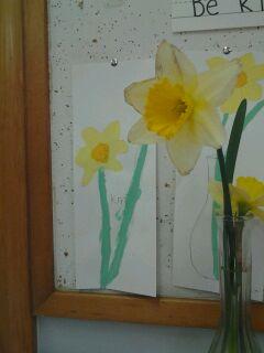 Daffodil Study.JPG