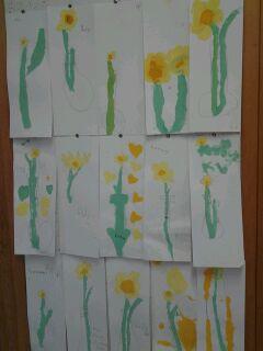 Daffodil Study2.JPG