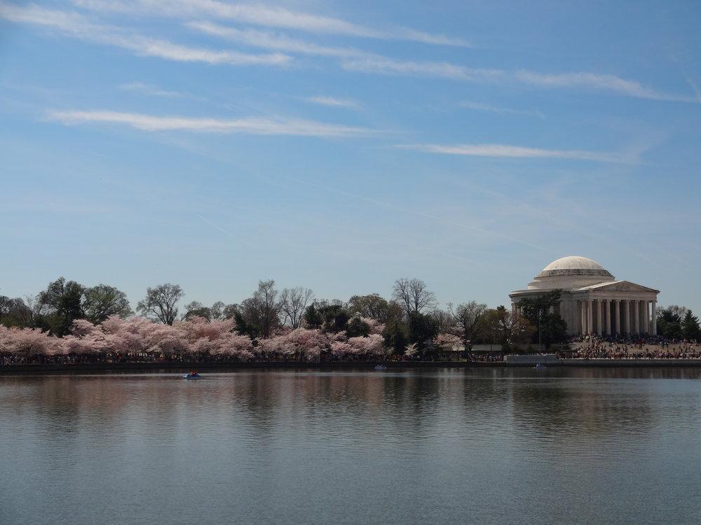 Jefferson Memorial / Tidal Basin