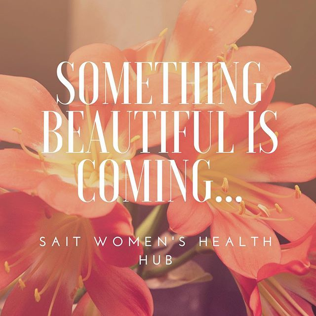 Something beautiful is coming... SAIT Women's Health Hub launching soon