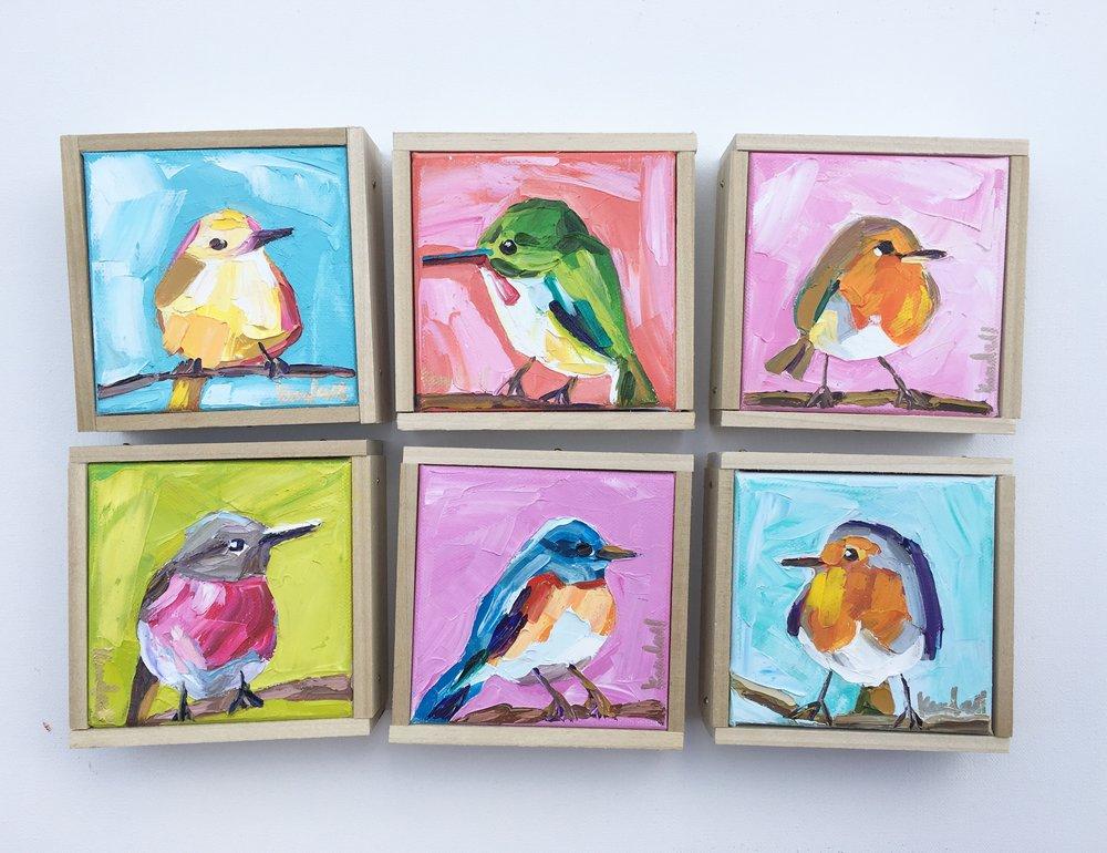 birds:tp.jpg
