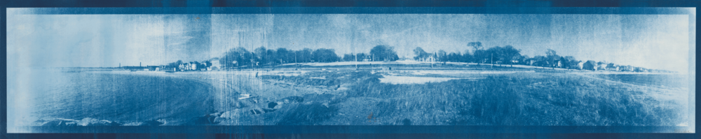 hazelwood-park-cyanotype
