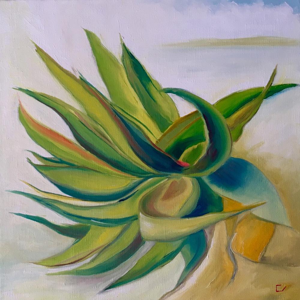 "Palmfly 1  12"" x 12""  Oil on Canvas"