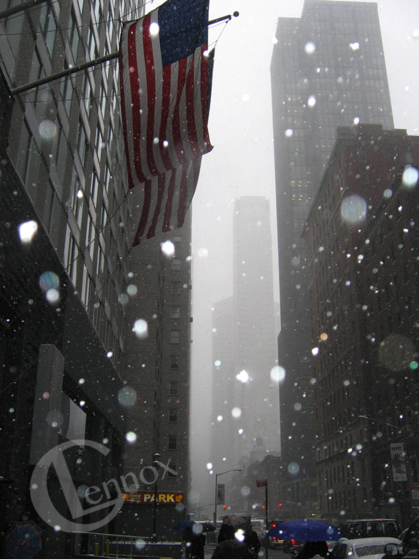 Snow in NYC, 2005