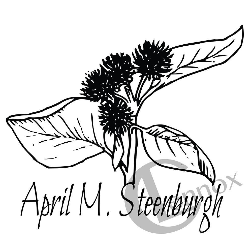 2017 April M. Steenburgh