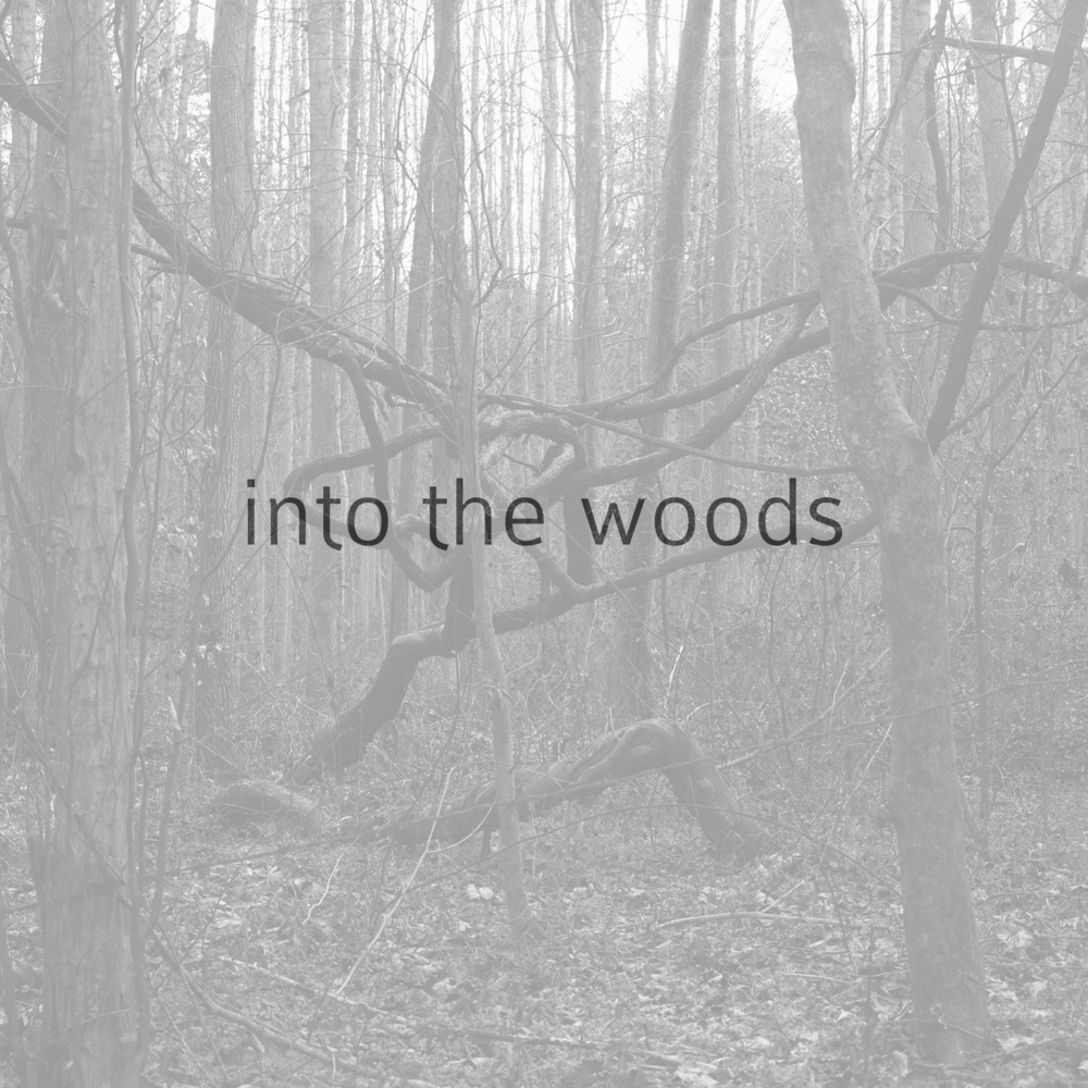 into the woods.jpeg