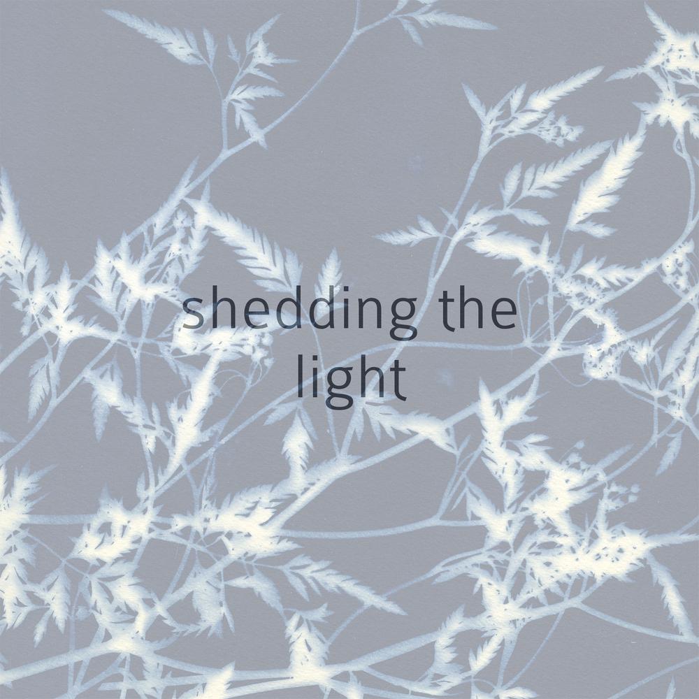 shedding the light.jpeg