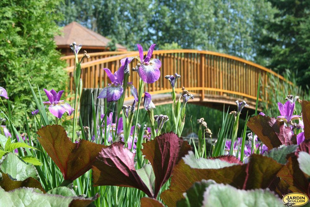Jardin Scullion 2 du propriétaire.jpg