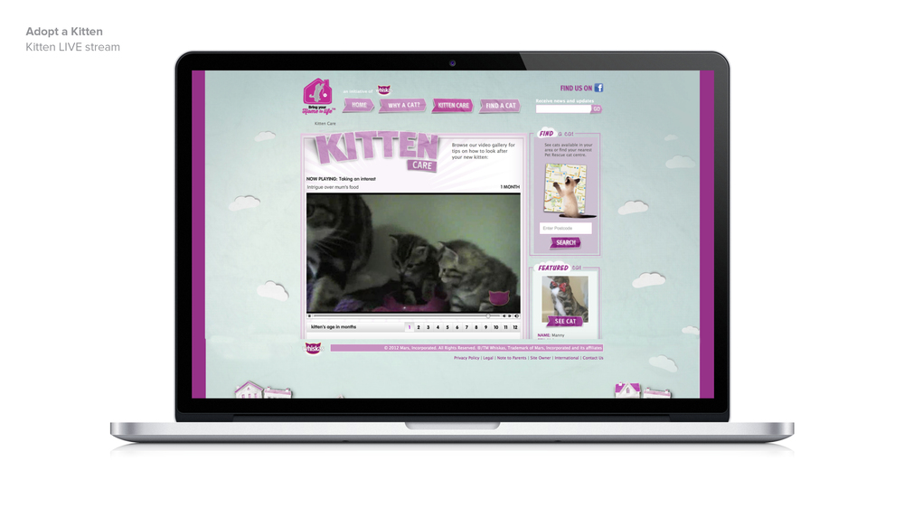 BDN_website_tiles_whiskas_AAK9.jpg