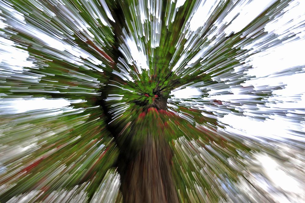 Zoomeffekt.jpg