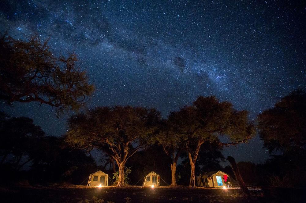 39208763_foto-safari-okavango-delta.jpg