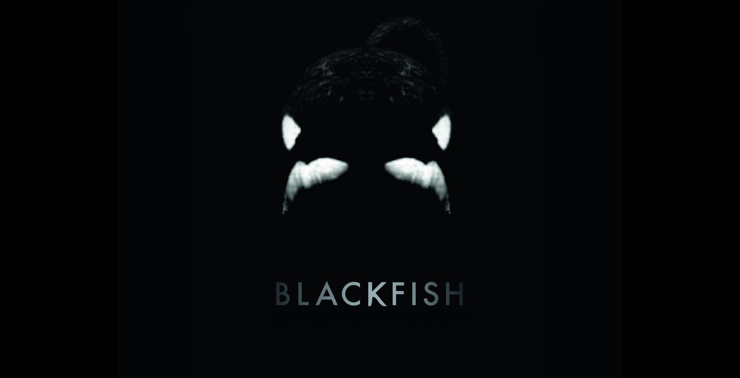 black fish torrent