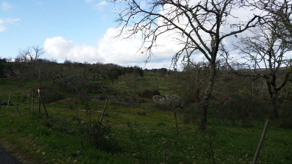 terreno nei dintorni di Castelo de Vide