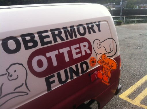 A1-Tobermory-Otter-fund-an-otter-escorted-me-home-510x381.jpg