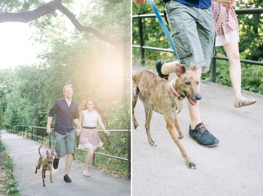 napfeny jegyesfotozas kutya agar termeszetes spontan.jpg