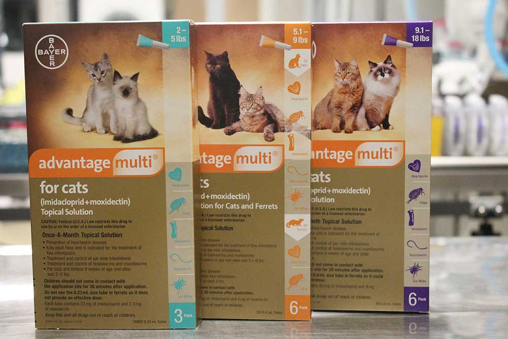Medications And Other Products Low Cost Spay Neuter Clinic