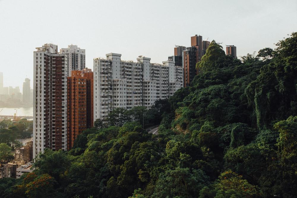 Hong Kong Final -100.jpg