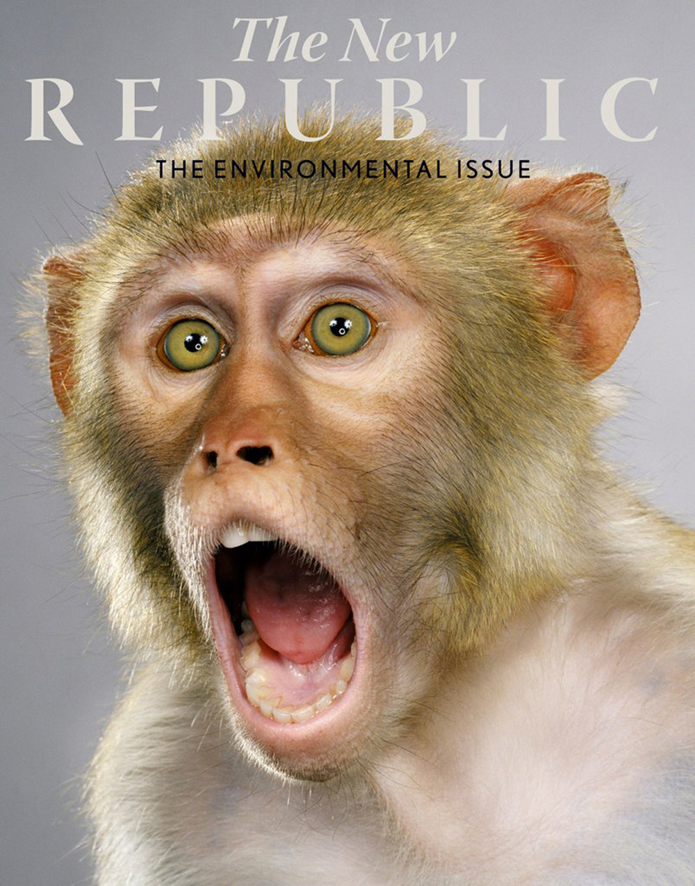 the_new_rep_envir_issue_cover.jpg