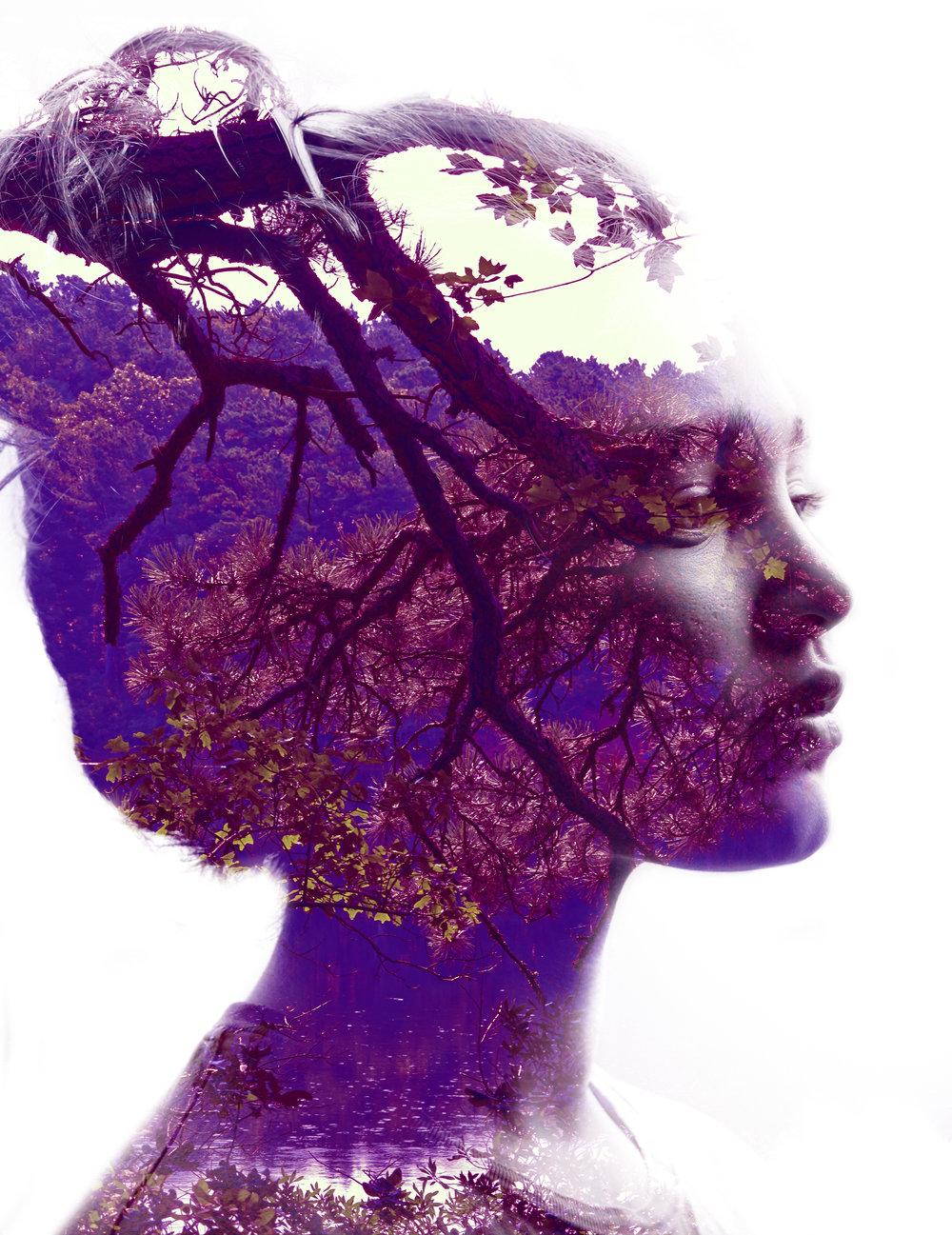 violetnewcollage3.jpg